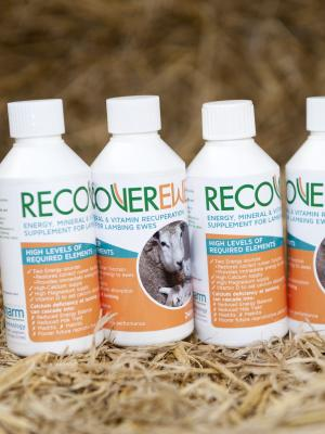 Recover Ewe product image